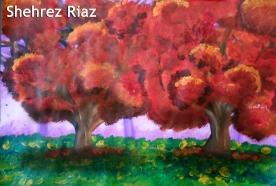 Shehrez Riaz
