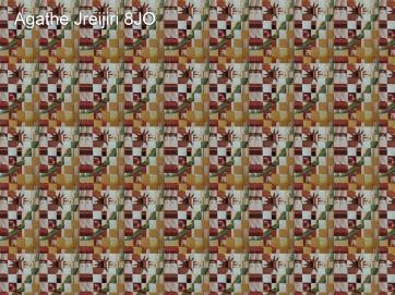 Agathe Jreyiri 8JO