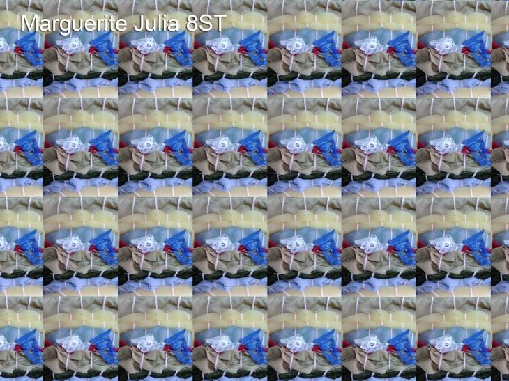 Marguerite Julia 8ST