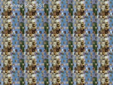 Shehrez Riaz 8ST